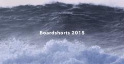 Patagonia Boardshorts